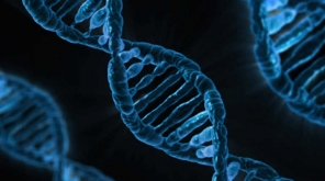 Genetic Profiles May Help Preventing The Worst Side Of Cancer Chemotherapy