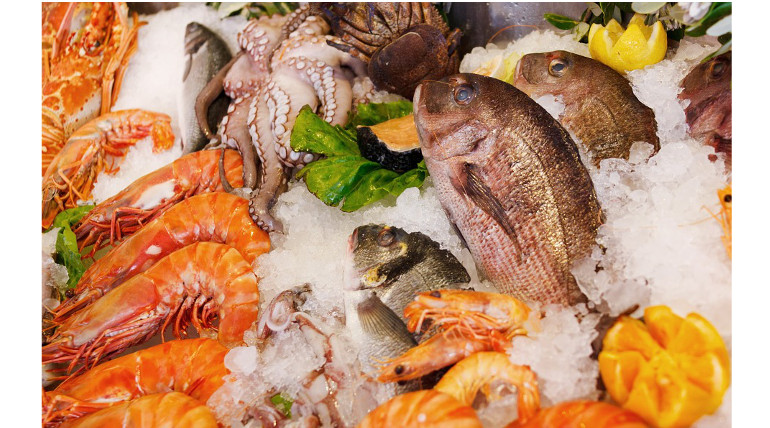 Sea Food And Pregnancy Are Related Says Recent Research
