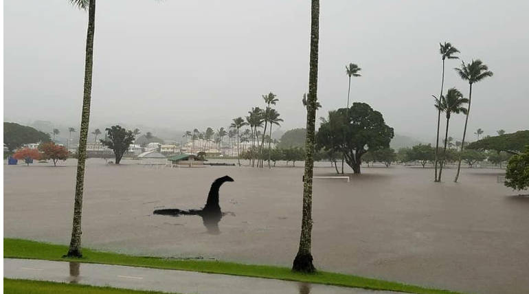 Hurricane Lane, Flood hits Hawaii Island in US with Heavy Rainfall: Trump declares Emergency , Pic credit - @GrizzlyGrant_ Twitter