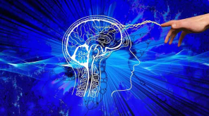 Memory Boosters- New Findings that it improves even Adult Brain