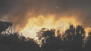 Researchers Warning on the Australian Bushfire There is More to Come