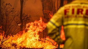 Australian Bushfires Will Increase the Global Temperature