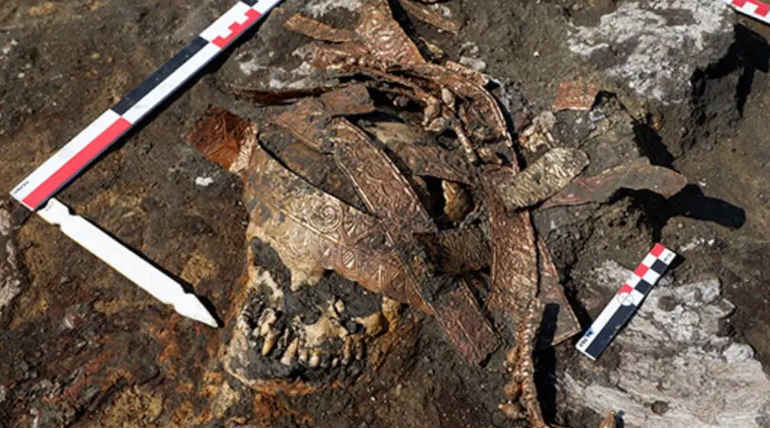 Remains of Ancient Real Life Wonder Women Found in Russia- RAS Institute of Archaeology