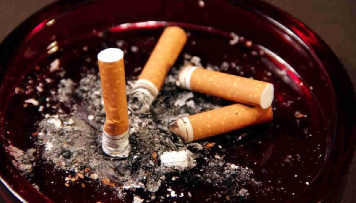 Cigarette Butts / Representation